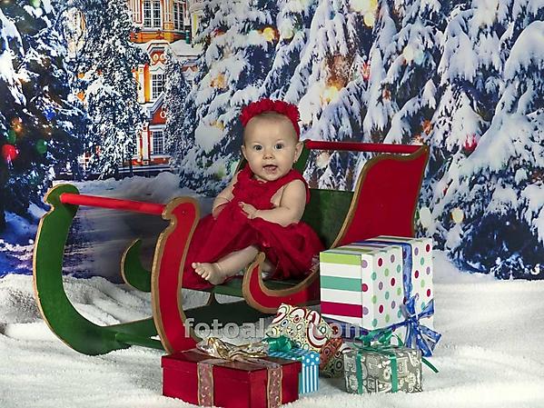 Foto de Navidad 2019_6